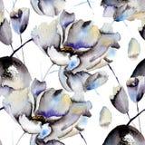 Άνευ ραφής σχέδια με τα όμορφα λουλούδια Στοκ Εικόνες
