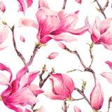 Άνευ ραφής σχέδιο ανοίξεων Watercolor Floral με Magnolia ελεύθερη απεικόνιση δικαιώματος