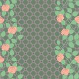 Άνευ ραφής σχέδιο δαντελλών με τα τριαντάφυλλα Υπόβαθρο κιγκλιδωμάτων Στοκ εικόνες με δικαίωμα ελεύθερης χρήσης