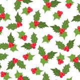 Άνευ ραφής σχέδιο γκι μούρων της Holly ilex πράσινο Στοκ φωτογραφία με δικαίωμα ελεύθερης χρήσης