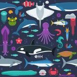 Άνευ ραφής σχέδιο ζώων θάλασσας Στοκ Φωτογραφία