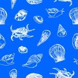 Άνευ ραφής σχέδιο θαλασσινών κοχυλιών στο μπλε υπόβαθρο διάνυσμα Στοκ φωτογραφία με δικαίωμα ελεύθερης χρήσης