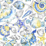 Άνευ ραφής σχέδιο θαλασσινών κοχυλιών Watercolor ελεύθερη απεικόνιση δικαιώματος