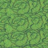 Άνευ ραφής σχέδιο κινούμενων σχεδίων με το πράσινο λάχανο Ράστερ συρμένο χέρι α Στοκ Φωτογραφία