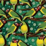 Άνευ ραφής σχέδιο κλάδων δέντρων πουλιών παπαγάλων Στοκ Εικόνα