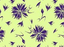Άνευ ραφής σχέδιο με ένα cornflower σε ένα υπόβαθρο στοκ εικόνες