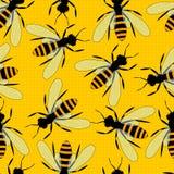 Άνευ ραφής σχέδιο μελισσών Φωτεινό κίτρινο υπόβαθρο με τις μεγάλες μέλισσες Στοκ εικόνες με δικαίωμα ελεύθερης χρήσης