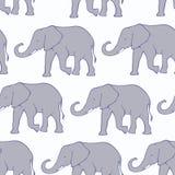Άνευ ραφής σχέδιο με συρμένους τους χέρι ελέφαντες σκιαγραφιών Στοκ Εικόνα