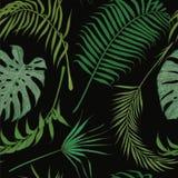 Άνευ ραφής σχέδιο με τα εξωτικά φύλλα στο μαύρο υπόβαθρο Στοκ φωτογραφίες με δικαίωμα ελεύθερης χρήσης