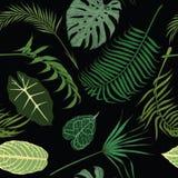 Άνευ ραφής σχέδιο με τα εξωτικά φύλλα στο μαύρο υπόβαθρο Στοκ εικόνες με δικαίωμα ελεύθερης χρήσης