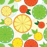 Άνευ ραφής σχέδιο με τα ζωηρόχρωμα εσπεριδοειδή Στοκ εικόνα με δικαίωμα ελεύθερης χρήσης