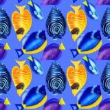 Άνευ ραφής σχέδιο με τα ζωηρόχρωμα ψάρια watercolor Hand-drawn wat Στοκ εικόνες με δικαίωμα ελεύθερης χρήσης