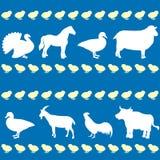 Άνευ ραφής σχέδιο με τα ζώα αγροκτημάτων Στοκ Εικόνες