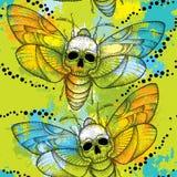 Άνευ ραφής σχέδιο με τα διαστιγμένα atropos σκώρων ή Acherontia γερακιών του θανάτου επικεφαλής και τους ζωηρόχρωμους λεκέδες Στοκ φωτογραφία με δικαίωμα ελεύθερης χρήσης