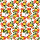 Άνευ ραφής σχέδιο με τα κόκκινα μήλα και τα φύλλα επίσης corel σύρετε το διάνυσμα απεικόνισης Στοκ Εικόνες