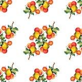 Άνευ ραφής σχέδιο με τα κόκκινα μήλα και τα φύλλα επίσης corel σύρετε το διάνυσμα απεικόνισης Στοκ εικόνα με δικαίωμα ελεύθερης χρήσης
