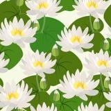 Άνευ ραφής σχέδιο με τα λουλούδια και τα φύλλα λωτού επίσης corel σύρετε το διάνυσμα απεικόνισης διανυσματική απεικόνιση