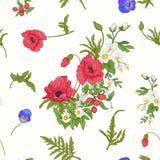 Άνευ ραφής σχέδιο με τα λουλούδια παπαρουνών, daffodils, anemones, βιολέτα Στοκ Φωτογραφίες