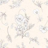 Άνευ ραφής σχέδιο με τα λουλούδια παπαρουνών, daffodils, anemones, βιολέτα Στοκ Φωτογραφία