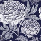 Άνευ ραφής σχέδιο με τα λουλούδια peonies Στοκ Εικόνες