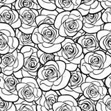 Άνευ ραφής σχέδιο με τα περιγράμματα τριαντάφυλλων επίσης corel σύρετε το διάνυσμα απεικόνισης Στοκ φωτογραφίες με δικαίωμα ελεύθερης χρήσης
