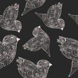 Άνευ ραφής σχέδιο με τα πουλιά λ doodle Στοκ Εικόνες