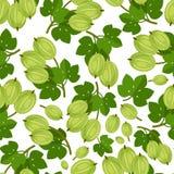 Άνευ ραφής σχέδιο με τα πράσινα μούρα Στοκ Εικόνες