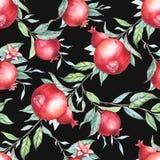 Άνευ ραφής σχέδιο με τα ρόδια watercolor (γρανάτες) Στοκ φωτογραφία με δικαίωμα ελεύθερης χρήσης