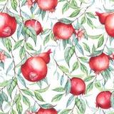 Άνευ ραφής σχέδιο με τα ρόδια watercolor (γρανάτες) Στοκ φωτογραφίες με δικαίωμα ελεύθερης χρήσης