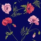 Άνευ ραφής σχέδιο με τα ρόδινα και κόκκινα λουλούδια παπαρουνών στο βοτανικό ST Στοκ Εικόνες