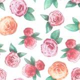 Άνευ ραφής σχέδιο με τα ρόδινα και κόκκινα τριαντάφυλλα απεικόνιση αποθεμάτων