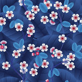 Άνευ ραφής σχέδιο με τα ρόδινα λουλούδια και το φύλλο κερασιών Στοκ Εικόνες