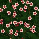 Άνευ ραφής σχέδιο με τα ρόδινα λουλούδια και το φύλλο κερασιών Στοκ Φωτογραφίες