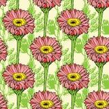 Άνευ ραφής σχέδιο με τα ρόδινα λουλούδια gerbera Στοκ Εικόνες