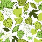 Άνευ ραφής σχέδιο με τα τυποποιημένα διακοσμητικά φύλλα Στοκ Εικόνες