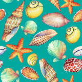 Άνευ ραφής σχέδιο με τα υποβρύχια αντικείμενα ζωής, που απομονώνονται στο τυρκουάζ υπόβαθρο Η θαλάσσια σχέδιο-Shell, αστέρι θάλασ διανυσματική απεικόνιση