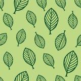 Άνευ ραφής σχέδιο με τα φύλλα δέντρων Στοκ Φωτογραφίες