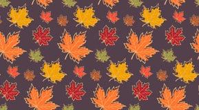 Άνευ ραφής σχέδιο με τα φύλλα σφενδάμου φθινοπώρου Στοκ Εικόνες