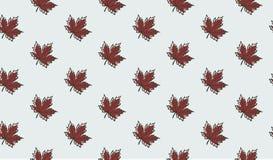 Άνευ ραφής σχέδιο με τα φύλλα σφενδάμου φθινοπώρου Στοκ Εικόνα
