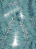 Άνευ ραφής σχέδιο με τα φύλλα φοινικών στο ύφος σκίτσων Στοκ Φωτογραφία
