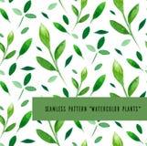 Άνευ ραφής σχέδιο με τα φύλλα watercolor ελεύθερη απεικόνιση δικαιώματος