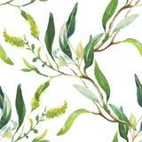 Άνευ ραφής σχέδιο με τα όμορφα λουλούδια, ζωγραφική Watercolor απεικόνιση αποθεμάτων