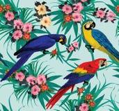 Άνευ ραφής σχέδιο με τα macaws που κάθονται στους κλάδους Στοκ Εικόνες