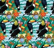 Άνευ ραφής σχέδιο με τα toucans και τα λουλούδια Χέρι Στοκ εικόνες με δικαίωμα ελεύθερης χρήσης