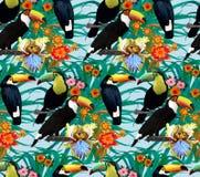 Άνευ ραφής σχέδιο με τα toucans και τα λουλούδια Χέρι Στοκ εικόνα με δικαίωμα ελεύθερης χρήσης