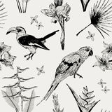 Άνευ ραφής σχέδιο με την άγριες τροπικές χλωρίδα και την πανίδα Στοκ Εικόνες