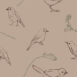 Άνευ ραφής σχέδιο με τη σκιαγραφία πουλιών Στοκ Φωτογραφία