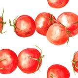 Άνευ ραφής σχέδιο με τις ντομάτες σχεδίων watercolor Στοκ εικόνα με δικαίωμα ελεύθερης χρήσης