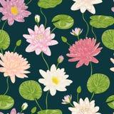 Άνευ ραφής σχέδιο με τον κρίνο νερού Διακοσμητικά floral στοιχεία σχεδίου συλλογής Στοκ φωτογραφίες με δικαίωμα ελεύθερης χρήσης