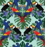 Άνευ ραφής σχέδιο με τους παπαγάλους macaw και toucans Στοκ Εικόνες